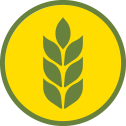 wheat_icon