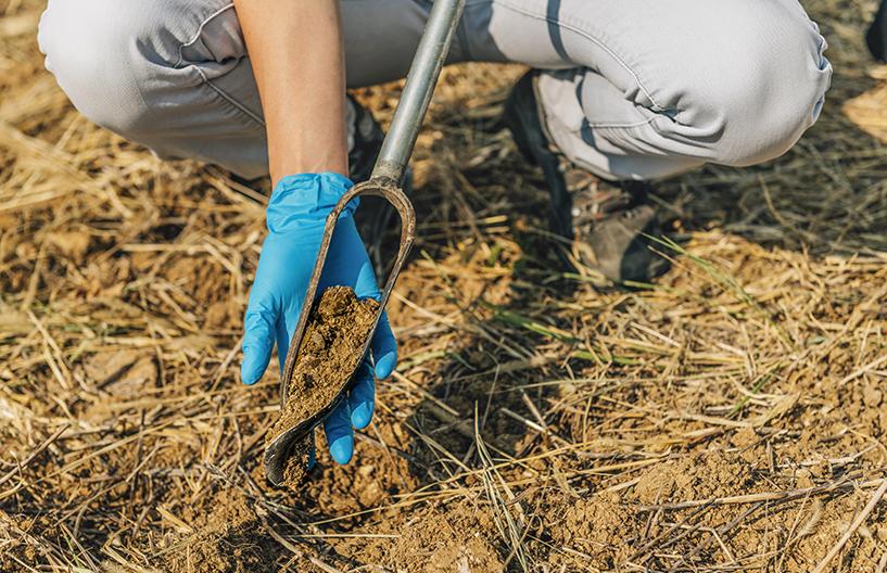 Soil Sampling. Female agronomist taking sample with soil probe sampler. Environmental protection, organic soil certification, research